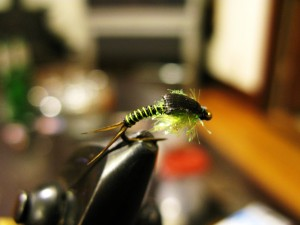 steelhead fly1