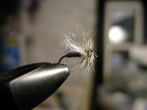 This simple pattern came from an old American Angler Magazine.  Black dubbing, white e.p. wing, and grizzly hackle make for a nice high riding stone fly.  The author prefers sizing up the hackle to make waking and skittering the fly easier.